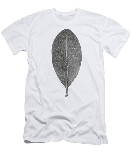 Indian Hawthorn Leaf Men's T-Shirt (Athletic Fit)