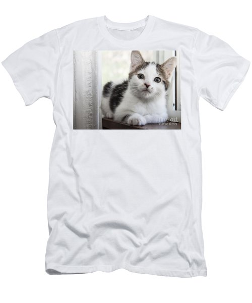 Kitten In The Window Men's T-Shirt (Athletic Fit)