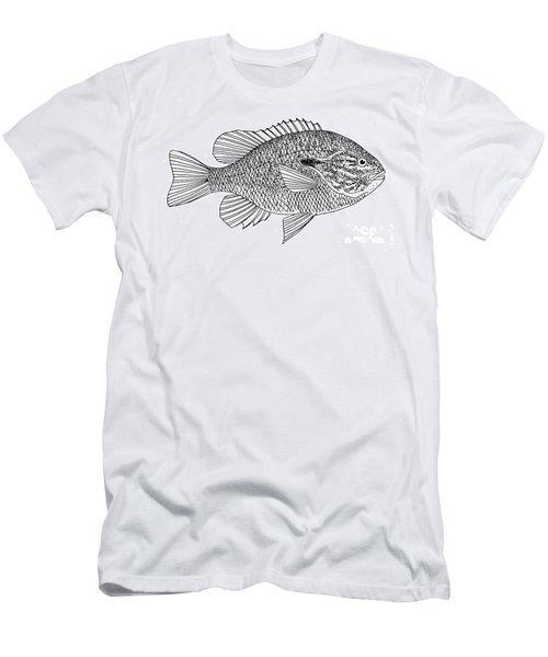 Long-eared Sunfish Men's T-Shirt (Athletic Fit)