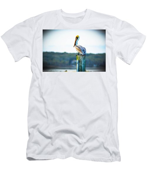 Men's T-Shirt (Slim Fit) featuring the photograph Posing Pelican by Shannon Harrington