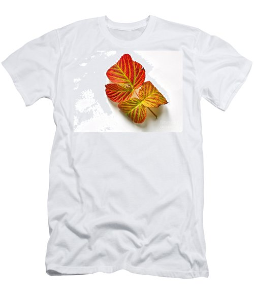 Raspberry Leaves In Autumn Men's T-Shirt (Slim Fit) by Sean Griffin
