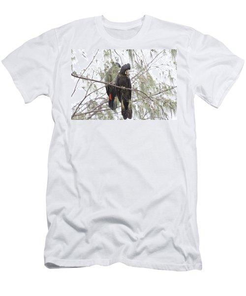 Red Tailed Black Cockatoos Men's T-Shirt (Slim Fit) by Douglas Barnard