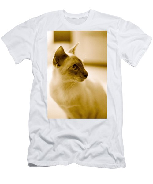 Siamese Feline Men's T-Shirt (Athletic Fit)