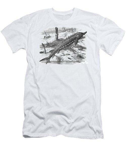 Sturgeon Men's T-Shirt (Athletic Fit)