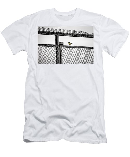 The Great Tit Men's T-Shirt (Athletic Fit)