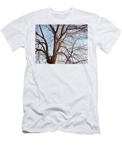 Men's T-Shirt (Slim Fit) featuring the photograph Winter Sunlight On Tree  by Chalet Roome-Rigdon