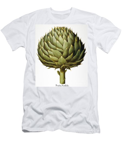 Artichoke, 1613 Men's T-Shirt (Athletic Fit)