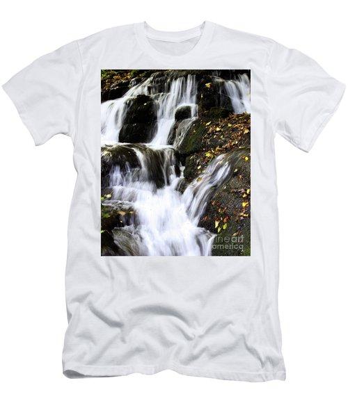 Badger Dingle Fall Men's T-Shirt (Slim Fit)