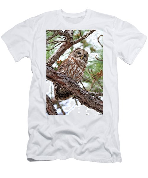 Barred Owl In Pine Tree Men's T-Shirt (Athletic Fit)