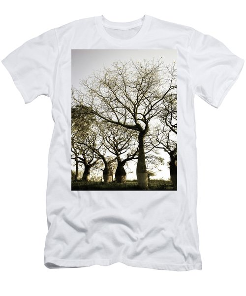 Beautiful Silk Floss Trees Men's T-Shirt (Athletic Fit)