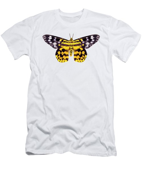 butterfly moth Dysphania subrepleta isolated  Men's T-Shirt (Athletic Fit)