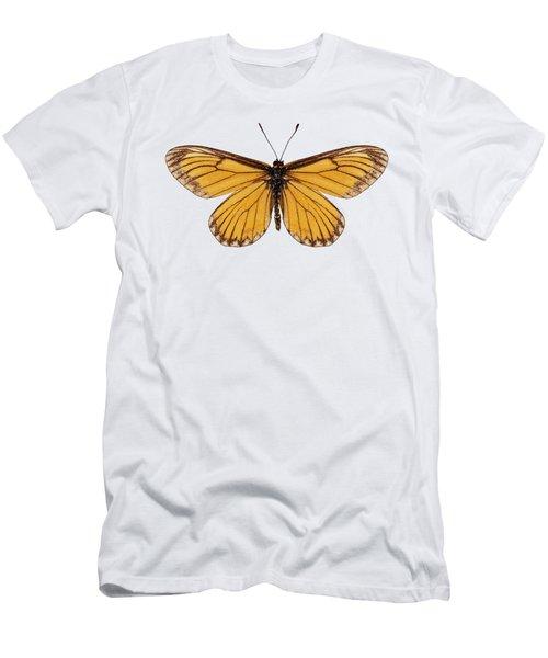 Butterfly Species Acraea Issoria  Men's T-Shirt (Athletic Fit)