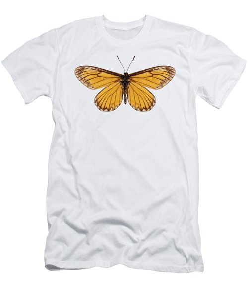 Butterfly Species Acraea Issoria  Men's T-Shirt (Athletic Fit)
