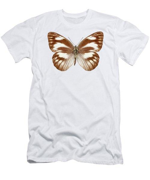 Butterfly Species Appias Libythea  Men's T-Shirt (Athletic Fit)