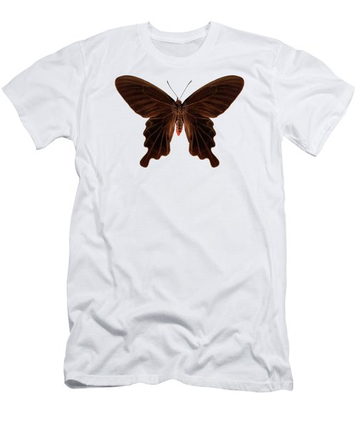 Butterfly Species Atrophaneura Aristolochiae Kotzebuea  Men's T-Shirt (Athletic Fit)