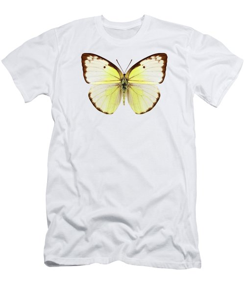 Butterfly Species Catopsilia Pomona  Men's T-Shirt (Athletic Fit)