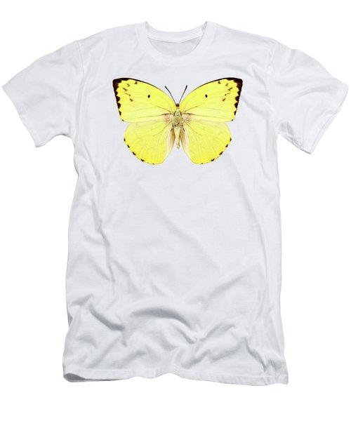 Butterfly Species Catopsilia Pomona Pomona  Men's T-Shirt (Athletic Fit)