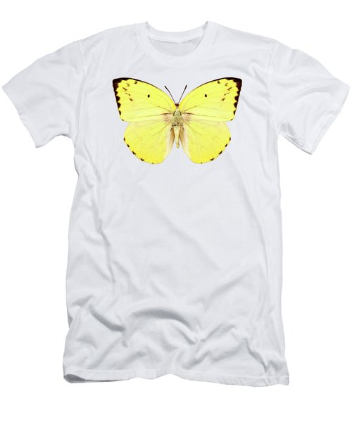 Butterfly Species Catopsilia Pomona Pomona  Men's T-Shirt (Athletic Fit)