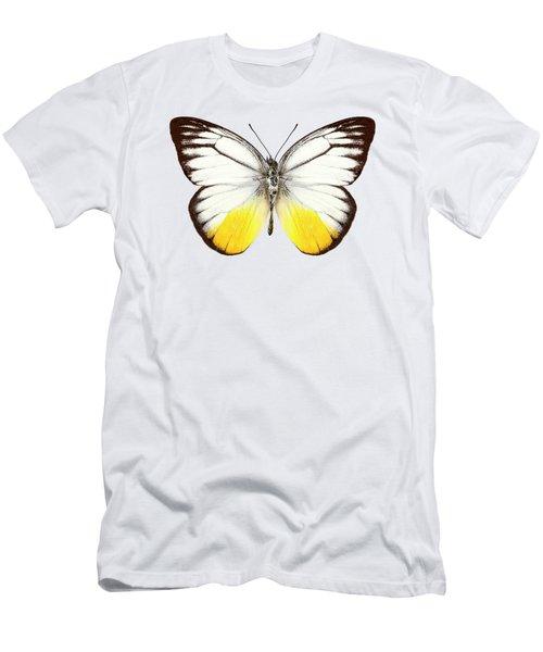 Butterfly Species Cepora Judith  Men's T-Shirt (Athletic Fit)