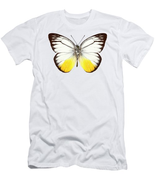 Butterfly Species Cepora Judith  Men's T-Shirt (Athletic Fit)