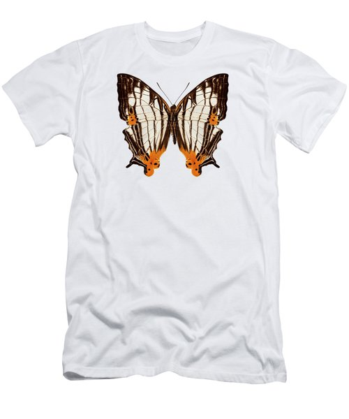 Butterfly Species Cyrestis Lutea Martini Men's T-Shirt (Athletic Fit)