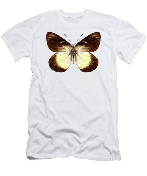 Butterfly Species Delias Fascelis Korupun  Men's T-Shirt (Athletic Fit)