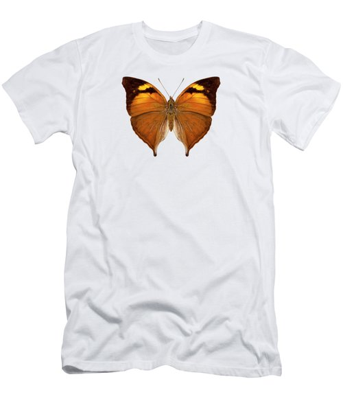 butterfly species Doleschallia bisaltide pratipa Men's T-Shirt (Athletic Fit)