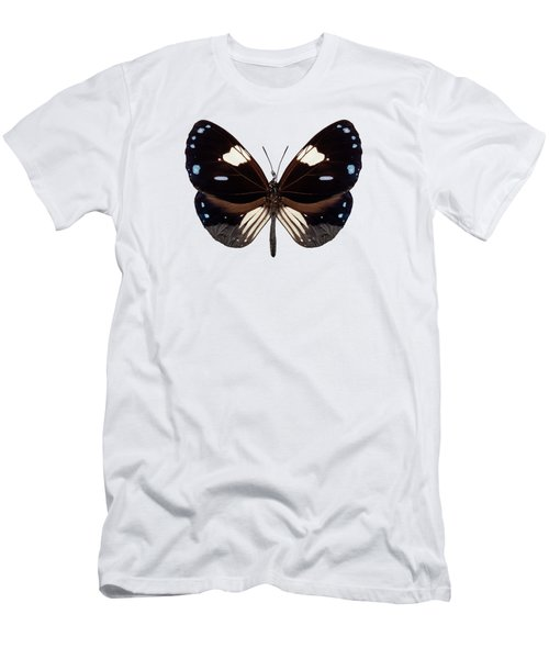 Butterfly Species Euploea Radamanthus Common Name Magpie Crow Men's T-Shirt (Athletic Fit)