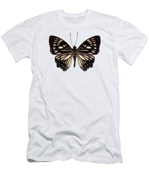 Butterfly Species Euripus Nyctelius Euploeoides  Men's T-Shirt (Athletic Fit)