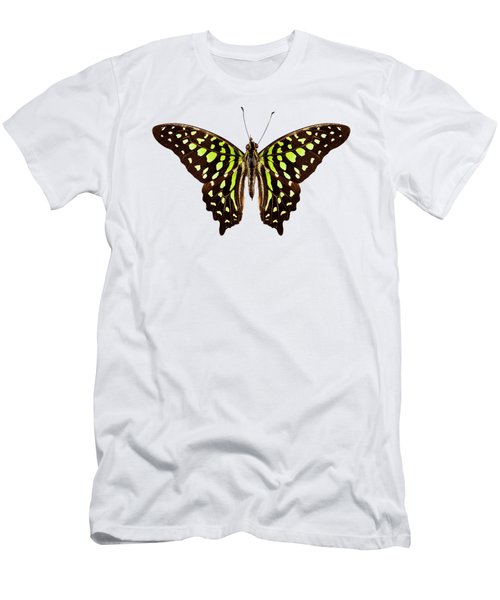 Butterfly Species Graphium Agamemnon  Men's T-Shirt (Athletic Fit)