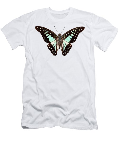butterfly species Graphium bathycles Men's T-Shirt (Athletic Fit)