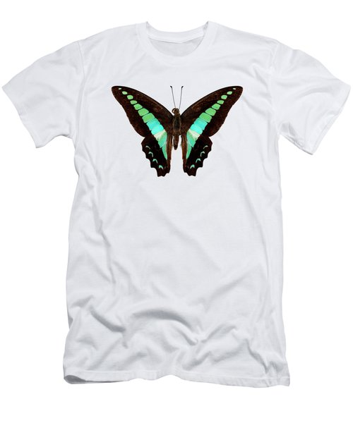 Butterfly Species Graphium Sarpedon Men's T-Shirt (Athletic Fit)