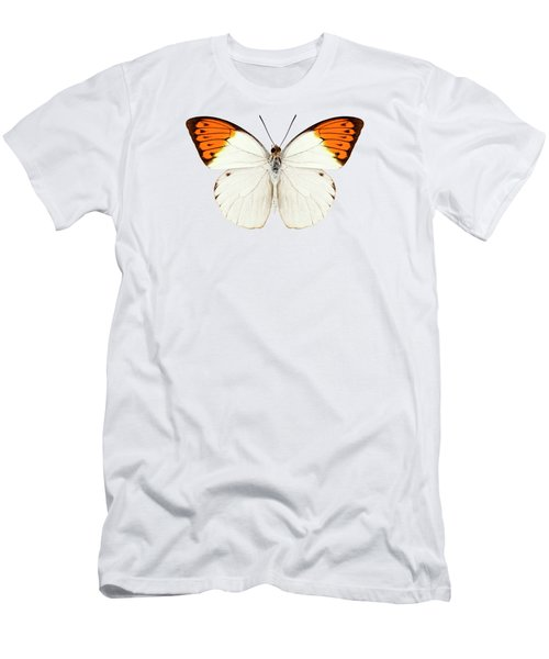 Butterfly Species Hebomoia Glaucippe  Men's T-Shirt (Athletic Fit)
