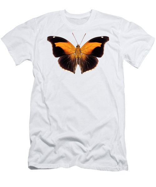 Butterfly Species Historis Odius Orion Men's T-Shirt (Athletic Fit)