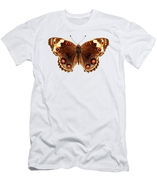 Butterfly Species Junonia Orithya  Men's T-Shirt (Athletic Fit)