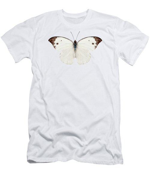 Butterfly Species Pieris Rapae Men's T-Shirt (Athletic Fit)