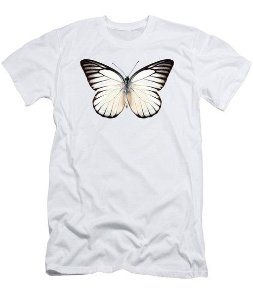 Butterfly Species Prioneris Philonome Men's T-Shirt (Athletic Fit)