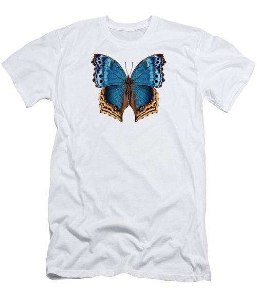 Butterfly Species Salamis Temora  Men's T-Shirt (Athletic Fit)