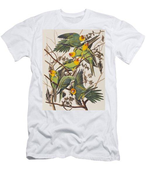 Carolina Parrot Men's T-Shirt (Athletic Fit)