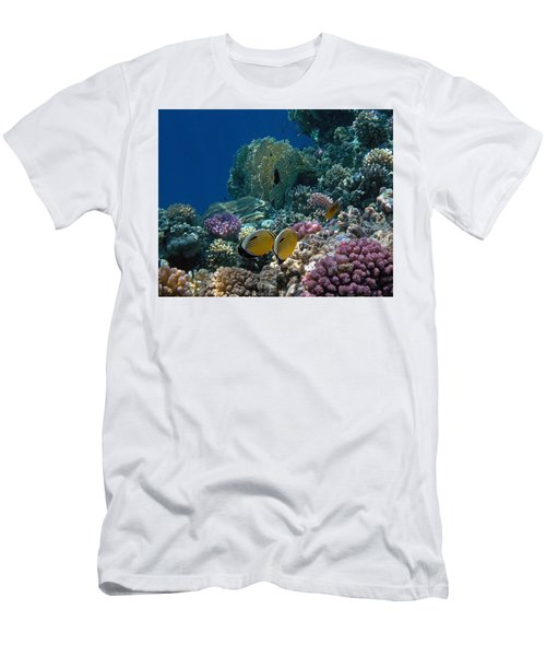 Exquisite Butterflyfish In The Red Sea Men's T-Shirt (Athletic Fit)