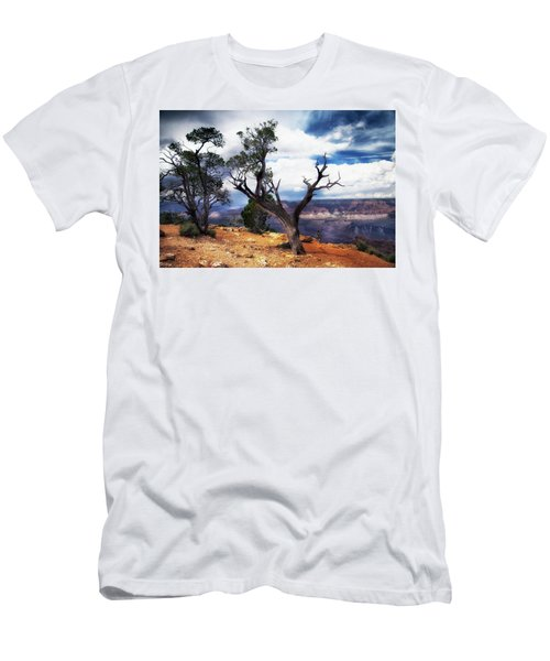 Grand Canyon Men's T-Shirt (Slim Fit) by James Bethanis