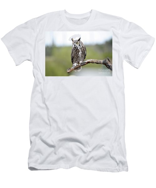 Great Horned Owl Men's T-Shirt (Athletic Fit)