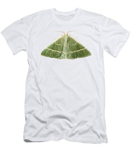 Green Moth Chlorissa Etruscaria Men's T-Shirt (Athletic Fit)