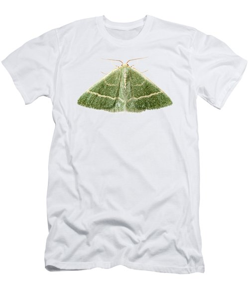 Green Moth Chlorissa Etruscaria Men's T-Shirt (Athletic Fit)
