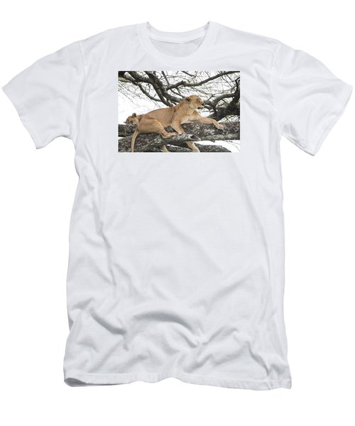 Men's T-Shirt (Slim Fit) featuring the photograph Lions In A Tree by Pravine Chester