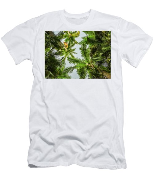 Palm Trees And Blue Sky Men's T-Shirt (Athletic Fit)
