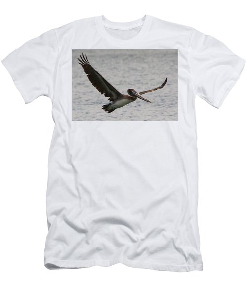 Pelican In Flight Men's T-Shirt (Slim Fit) by Laurel Talabere