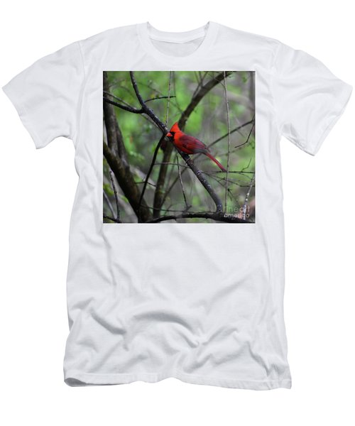 Men's T-Shirt (Slim Fit) featuring the photograph Saint Louis by Skip Willits