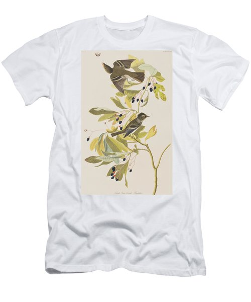 Small Green Crested Flycatcher Men's T-Shirt (Athletic Fit)
