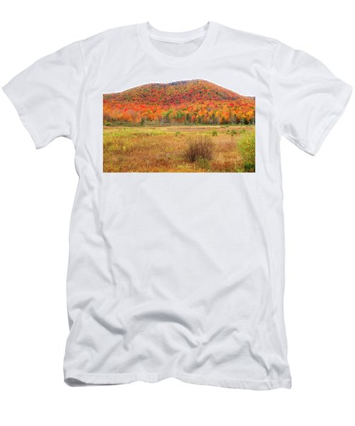 Vermont Foliage 1 Men's T-Shirt (Athletic Fit)